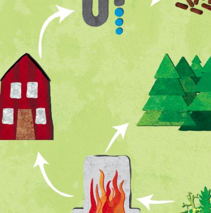 Skog, klimat och miljö